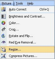 Resize is selected within the Picture menu. Screenshot.